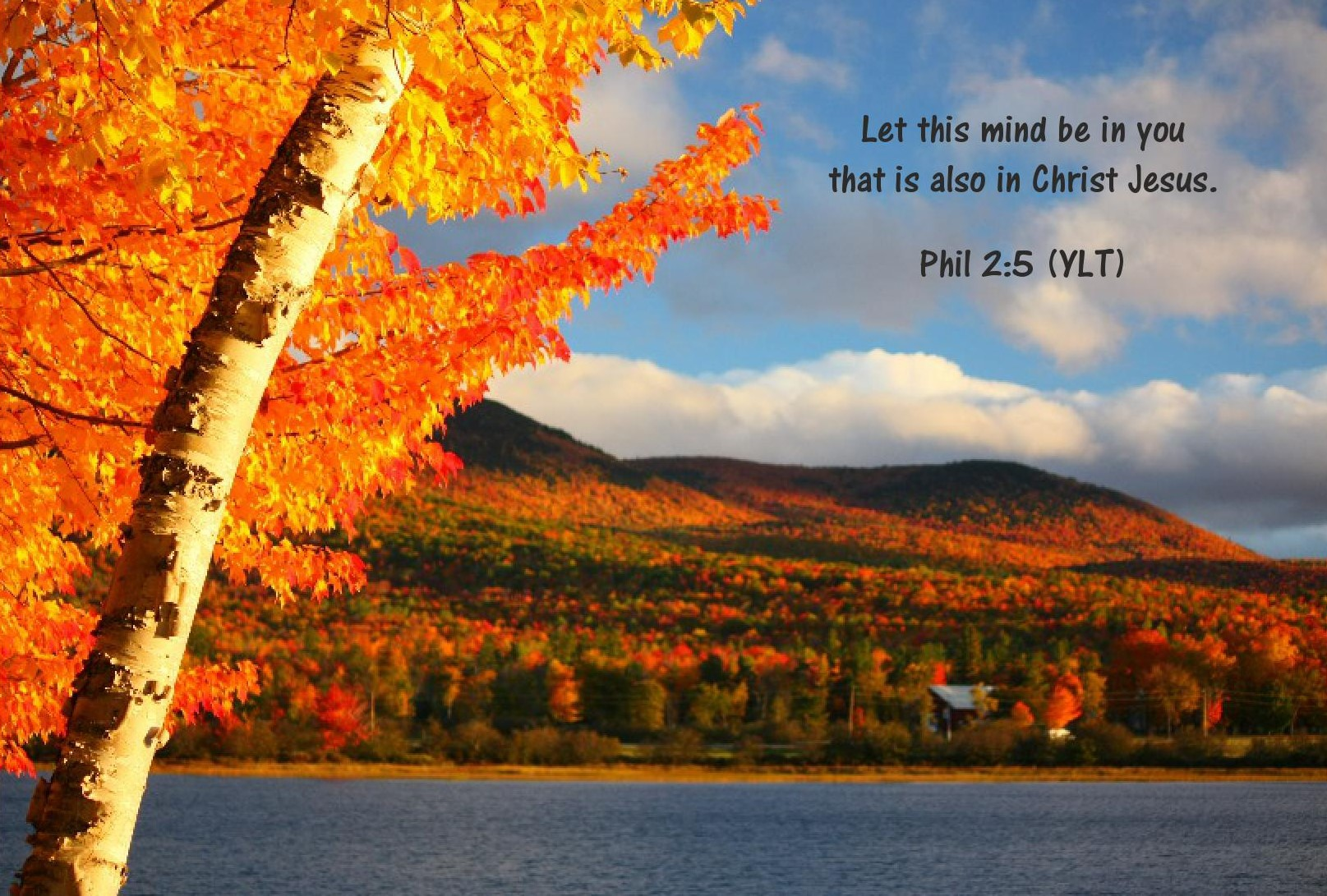 Peace in Christ